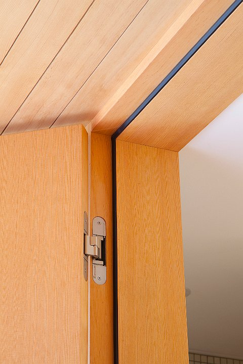 Buy Concealed Hinges For Interior Doors Modern Interior